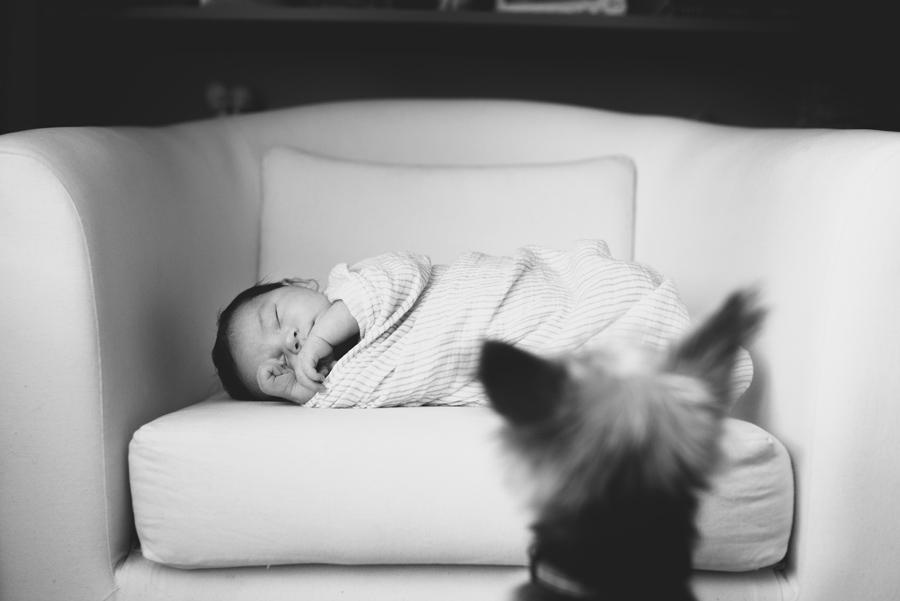 017-ennismore-newborn-lifestyle-session